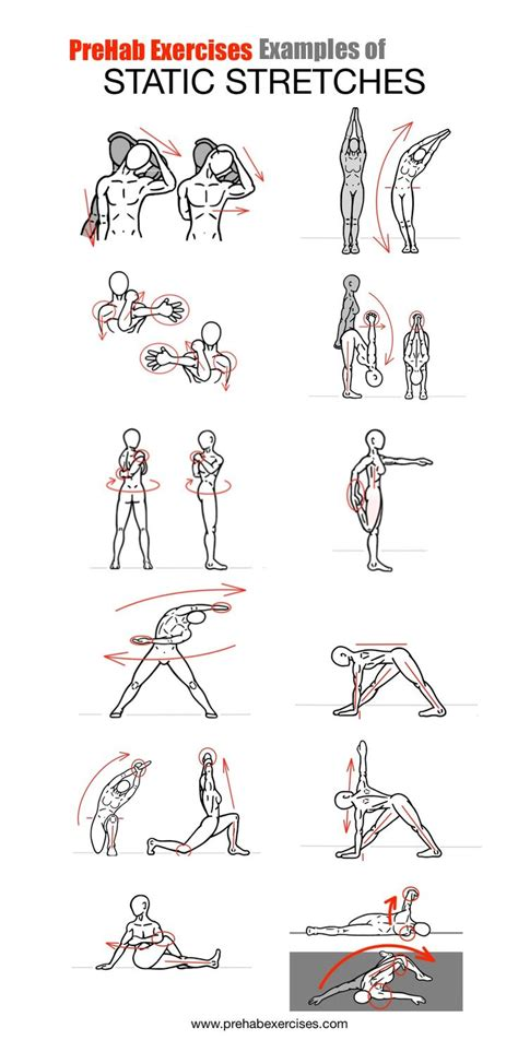 Stretches - Examples of Static Stretches | Dynamic