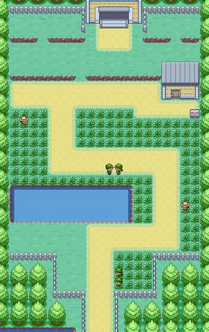Pokémon FireRed and LeafGreen/Route 6 — StrategyWiki, the